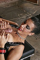 brazzers.com high quality pictures of Johnny Sins, Shay Sights