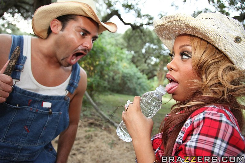 static brazzers scenes 4425 preview img 06