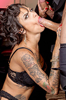 Top pornstar Bonnie Rotten, Danny Mountain, James Deen, Marco Banderas, Mark Davis, Mr. Pete, Toni Ribas, Veronica Avluv